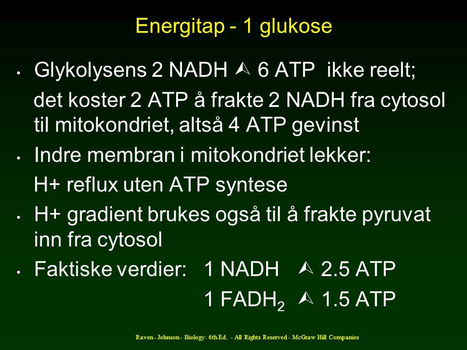 Glykolysens 2 NADH  6 ATP ikke reelt;