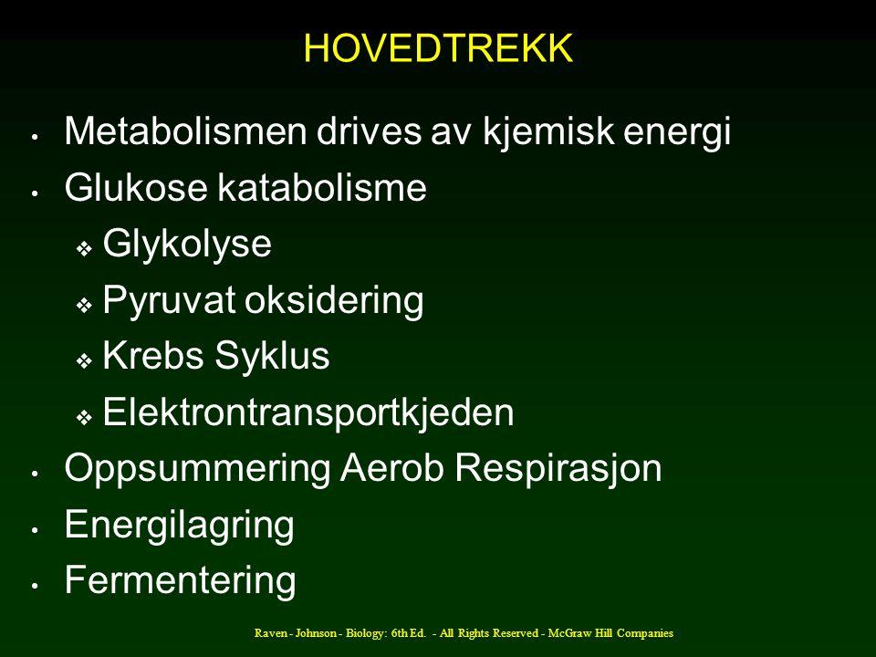 Metabolismen drives av kjemisk energi Glukose katabolisme Glykolyse