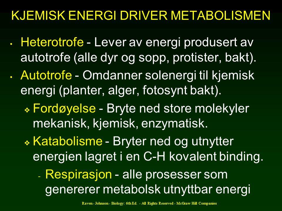 KJEMISK ENERGI DRIVER METABOLISMEN