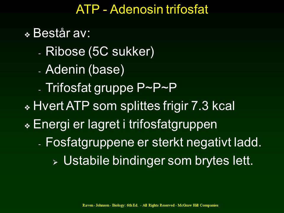ATP - Adenosin trifosfat