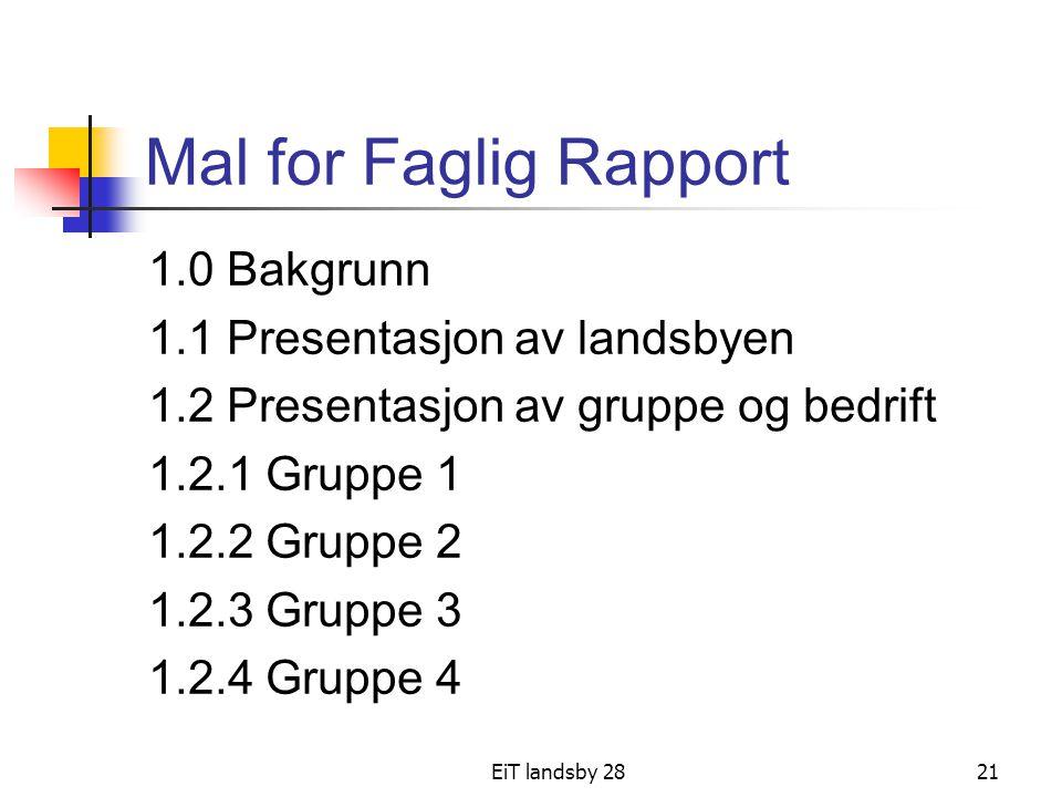 Mal for Faglig Rapport 1.0 Bakgrunn 1.1 Presentasjon av landsbyen