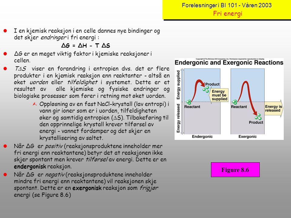 Forelesninger i BI 101 - Våren 2003 Fri energi