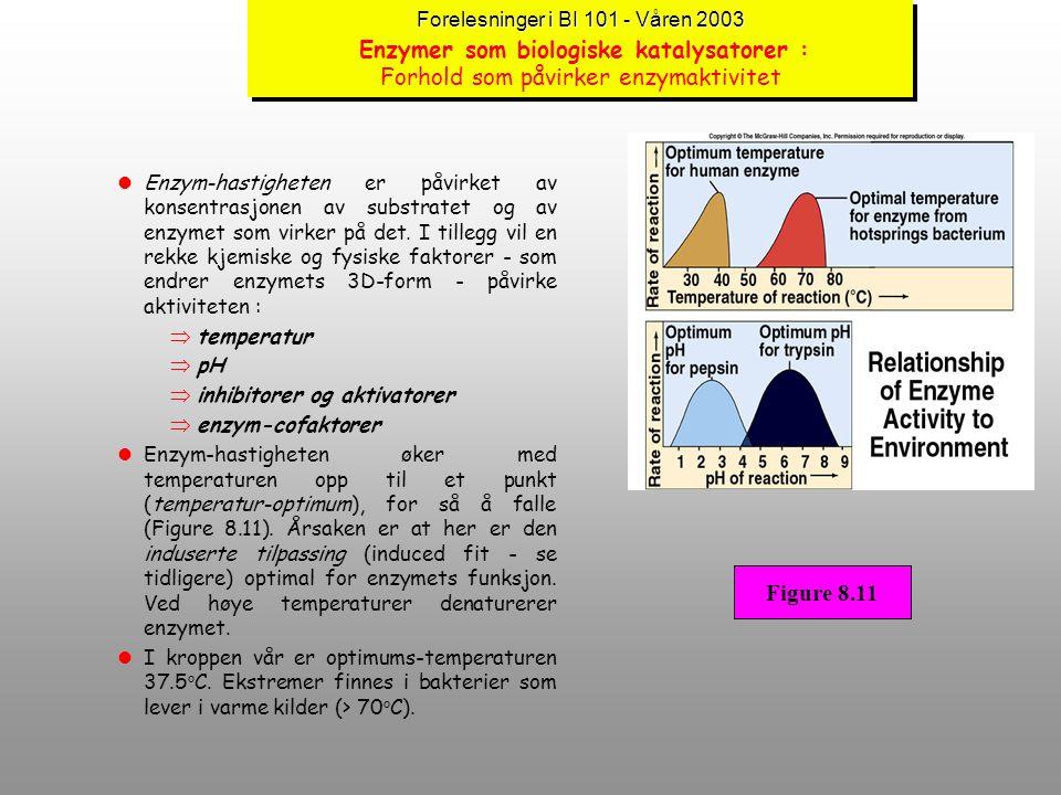 Forelesninger i BI 101 - Våren 2003 Enzymer som biologiske katalysatorer : Forhold som påvirker enzymaktivitet