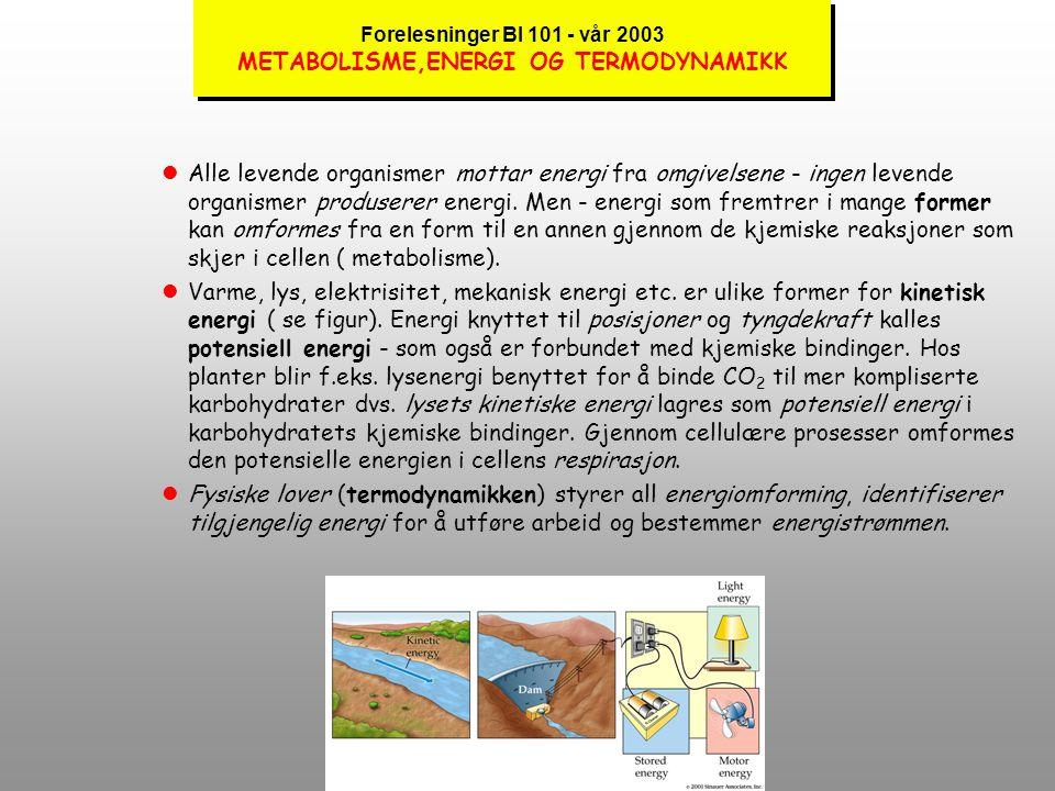 Forelesninger BI 101 - vår 2003 METABOLISME,ENERGI OG TERMODYNAMIKK