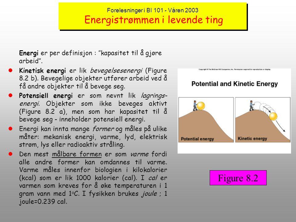 Forelesninger i BI 101 - Våren 2003 Energistrømmen i levende ting