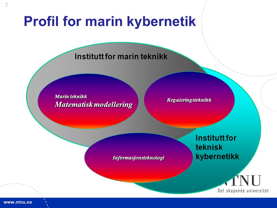 Profil for marin kybernetik
