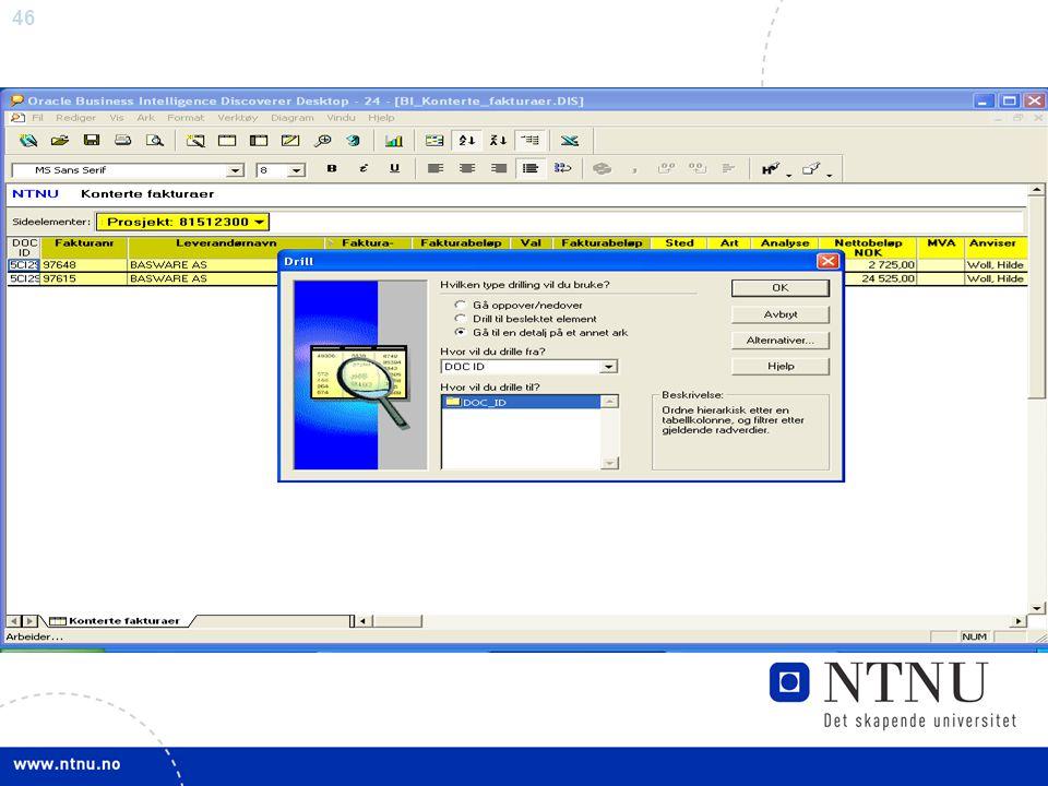 Ved å dobbelklikke på DOC_ID-feltet til fakturaen du ønsker å se, kommer drill-bildet opp.