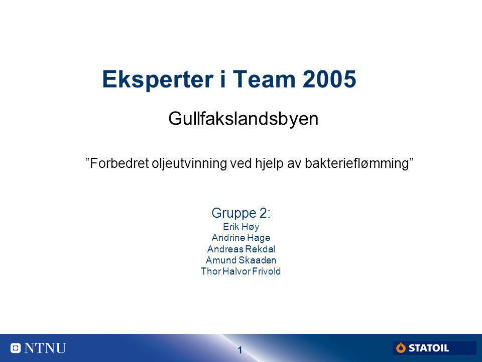 Eksperter i Team 2005 Gullfakslandsbyen