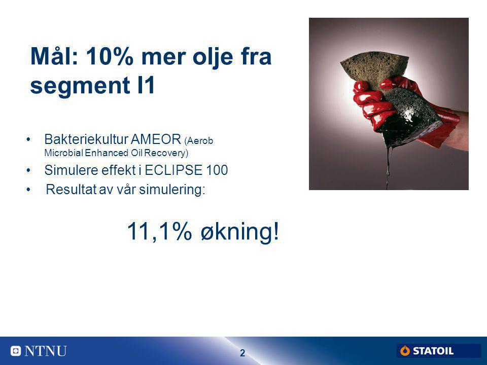 Mål: 10% mer olje fra segment I1