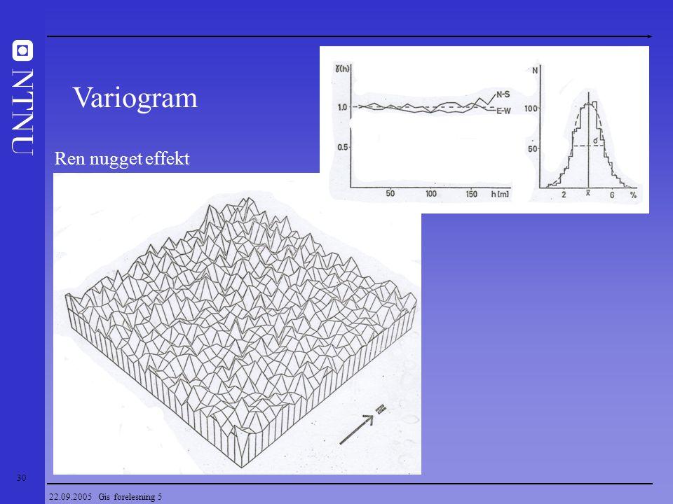 Variogram Ren nugget effekt 22.09.2005 Gis forelesning 5