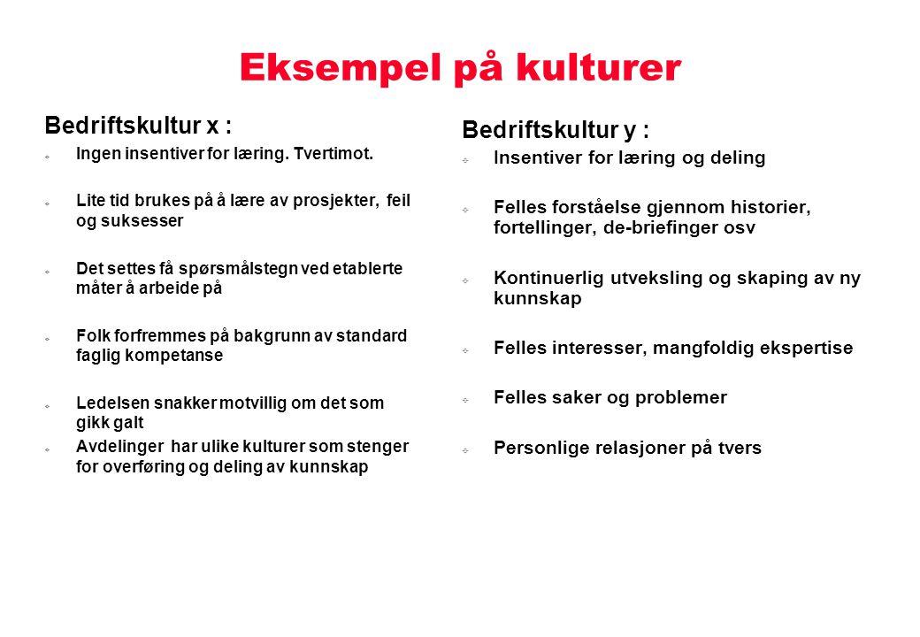 Eksempel på kulturer Bedriftskultur x : Bedriftskultur y :
