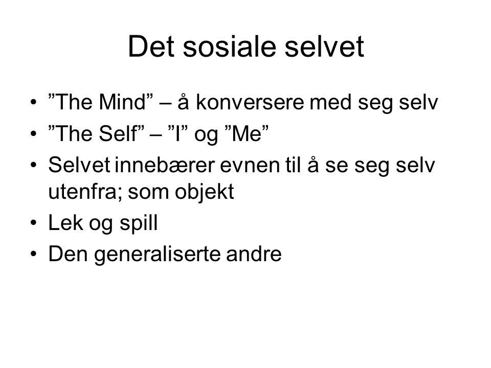 Det sosiale selvet The Mind – å konversere med seg selv