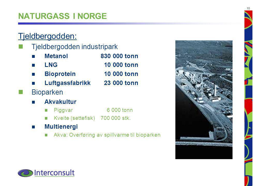 NATURGASS I NORGE Tjeldbergodden: Tjeldbergodden industripark