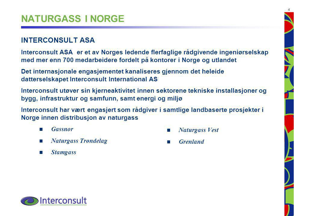 NATURGASS I NORGE INTERCONSULT ASA