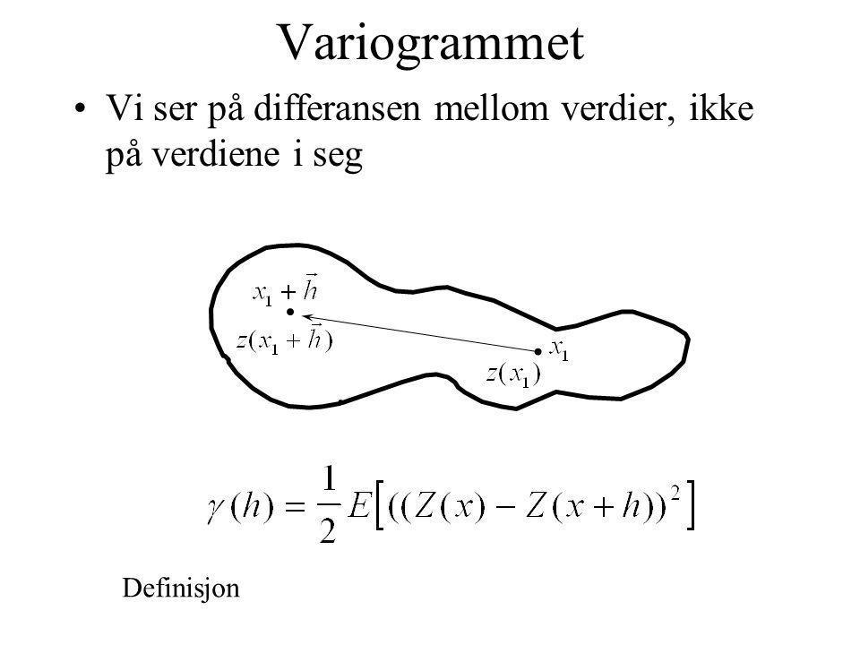 Variogrammet Vi ser på differansen mellom verdier, ikke på verdiene i seg Definisjon