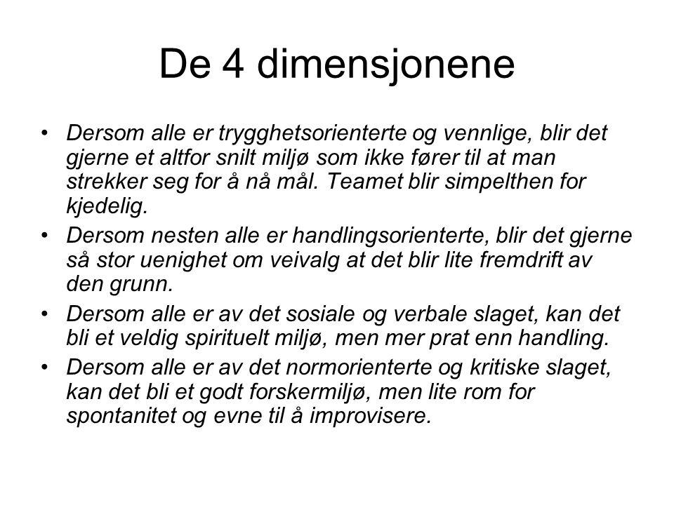 De 4 dimensjonene