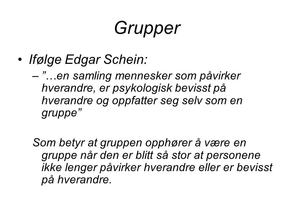 Grupper Ifølge Edgar Schein: