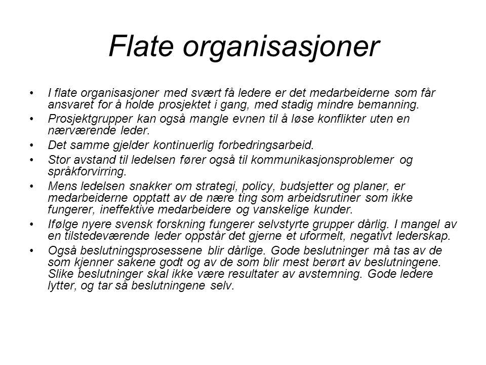 Flate organisasjoner