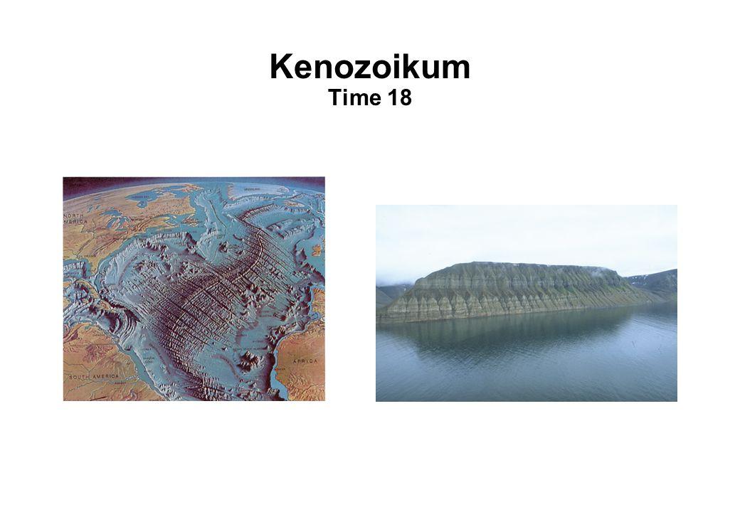 Kenozoikum Time 18