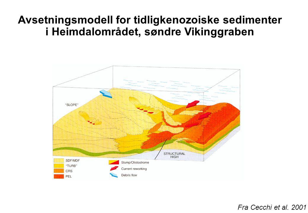 Avsetningsmodell for tidligkenozoiske sedimenter i Heimdalområdet, søndre Vikinggraben