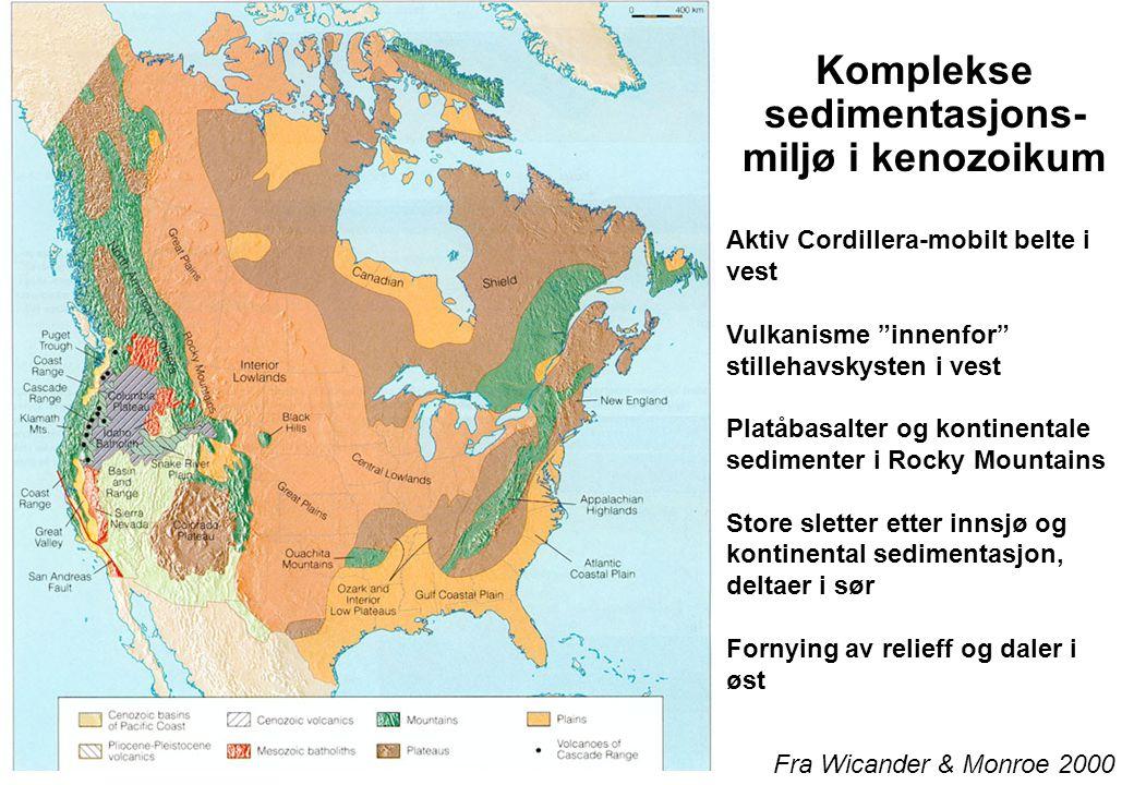 Komplekse sedimentasjons-miljø i kenozoikum