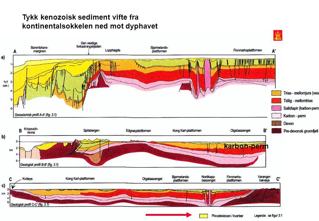 Tykk kenozoisk sediment vifte fra kontinentalsokkelen ned mot dyphavet