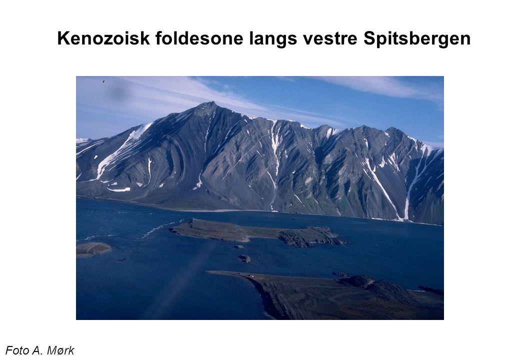Kenozoisk foldesone langs vestre Spitsbergen