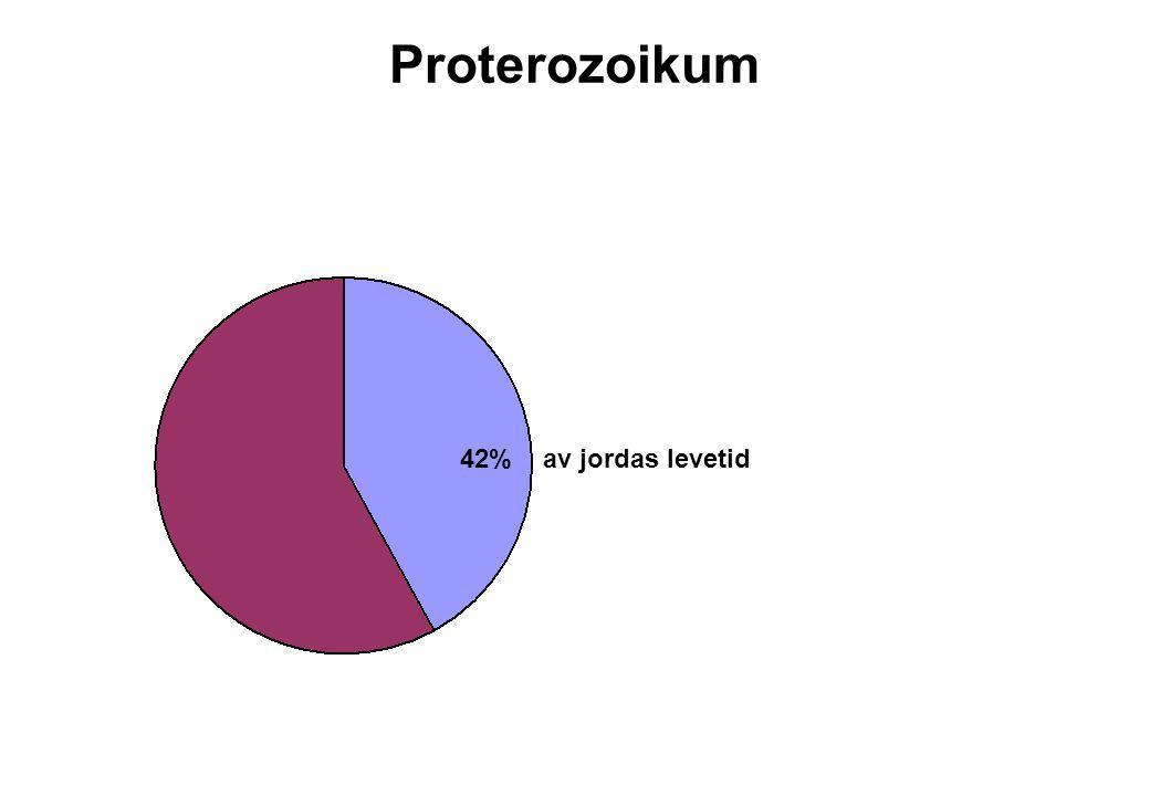 Proterozoikum 42% av jordas levetid
