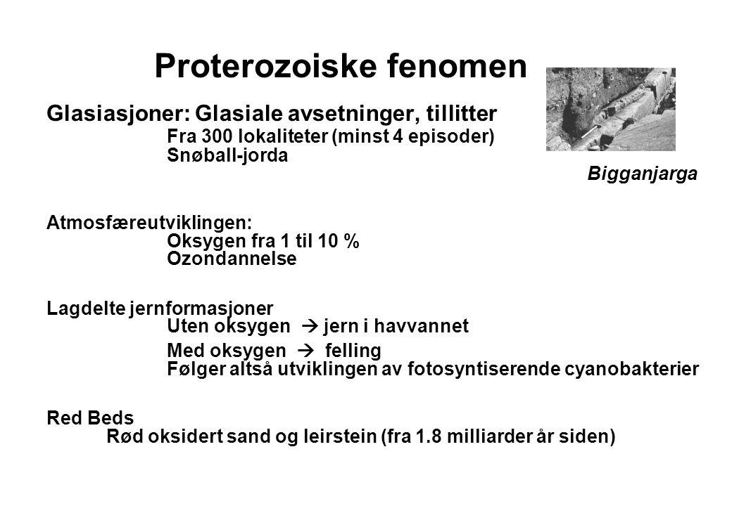 Proterozoiske fenomen