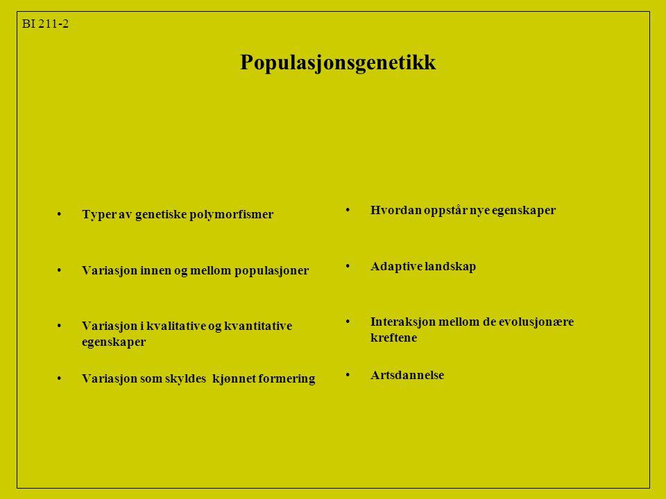 Populasjonsgenetikk BI 211-2 Typer av genetiske polymorfismer