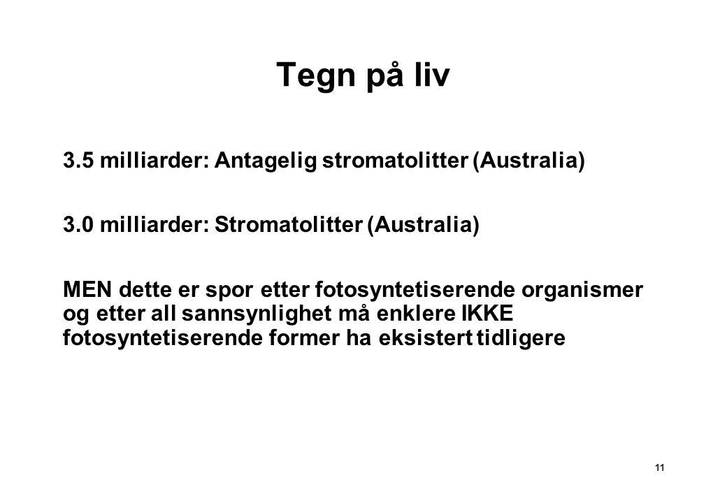 Tegn på liv 3.5 milliarder: Antagelig stromatolitter (Australia)