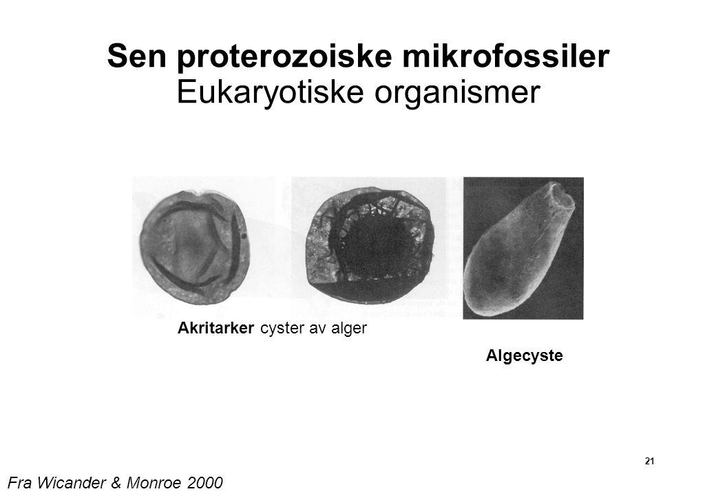 Sen proterozoiske mikrofossiler Eukaryotiske organismer