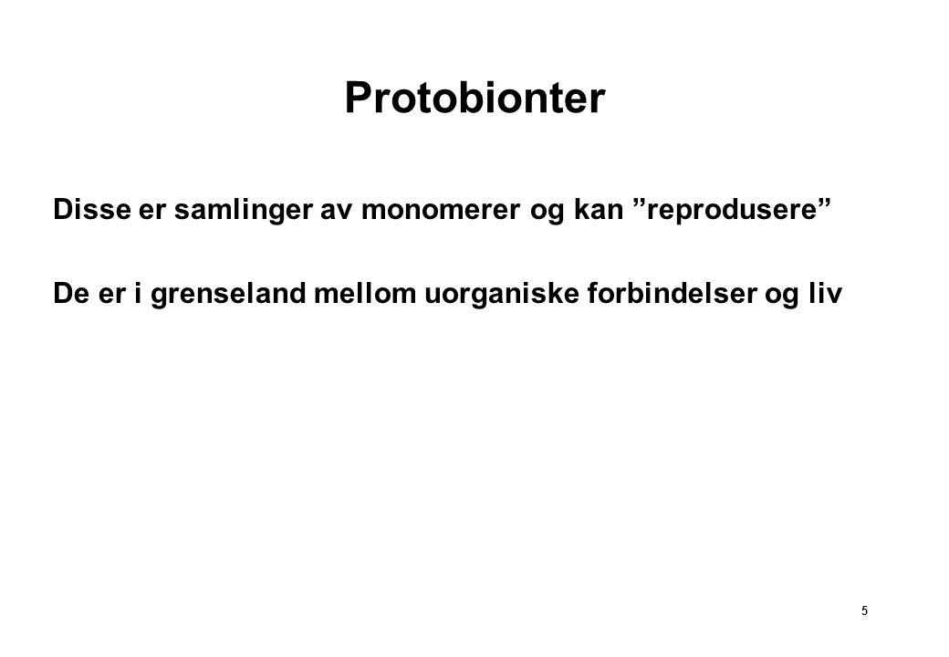 Protobionter Disse er samlinger av monomerer og kan reprodusere