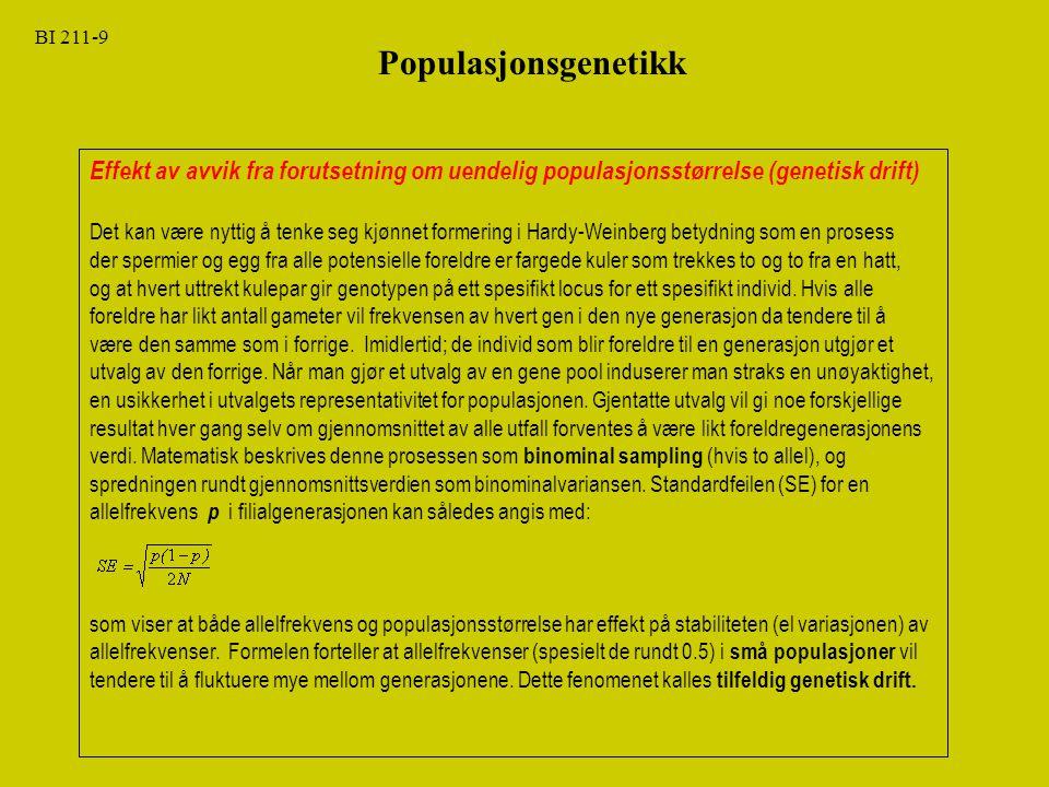 BI 211-9 Populasjonsgenetikk. Effekt av avvik fra forutsetning om uendelig populasjonsstørrelse (genetisk drift)