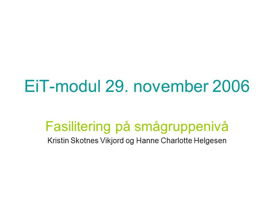EiT-modul 29. november 2006 Fasilitering på smågruppenivå