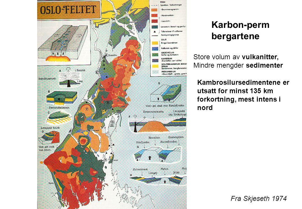 Karbon-perm bergartene Store volum av vulkanitter,
