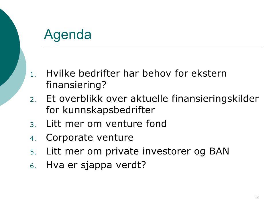 Agenda Hvilke bedrifter har behov for ekstern finansiering