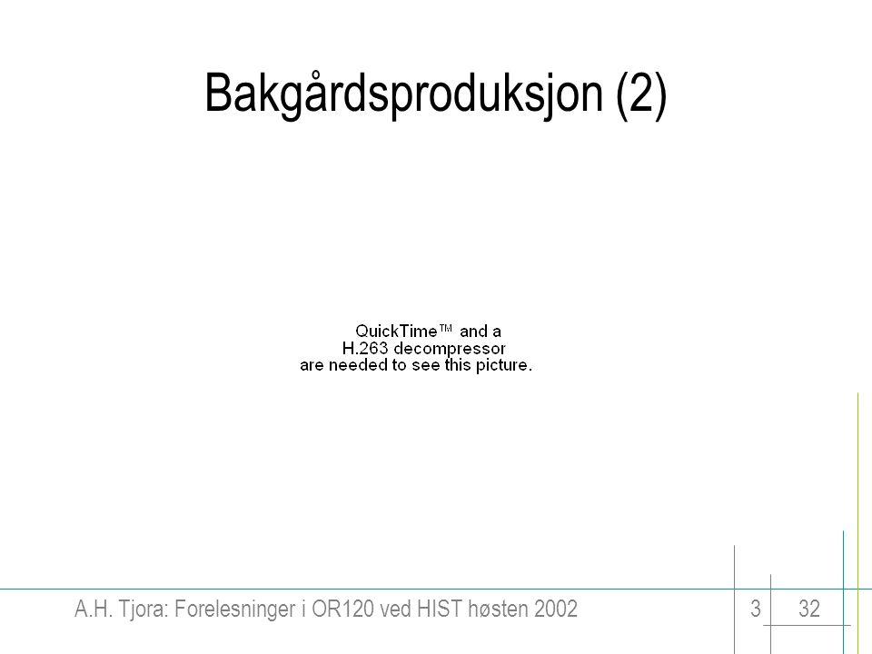 Bakgårdsproduksjon (2)