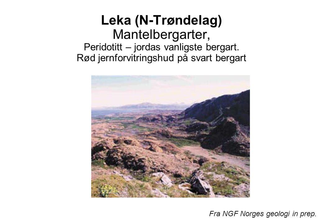 Leka (N-Trøndelag) Mantelbergarter, Peridotitt – jordas vanligste bergart. Rød jernforvitringshud på svart bergart