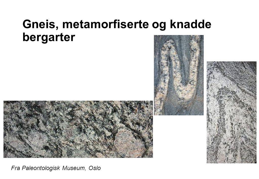 Gneis, metamorfiserte og knadde bergarter