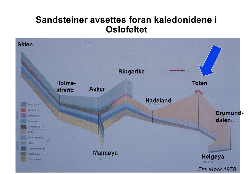 Sandsteiner avsettes foran kaledonidene i Oslofeltet