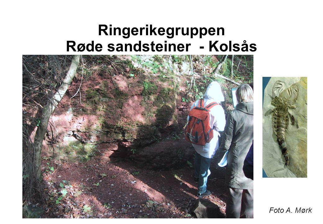 Ringerikegruppen Røde sandsteiner - Kolsås