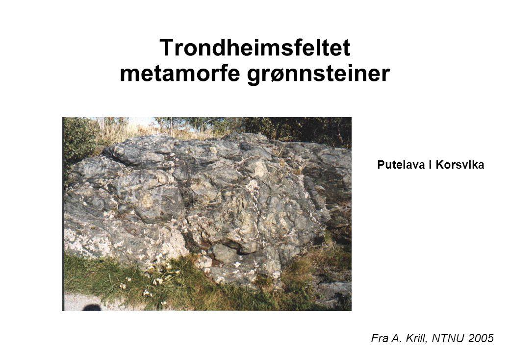 Trondheimsfeltet metamorfe grønnsteiner