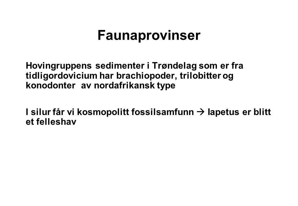Faunaprovinser Hovingruppens sedimenter i Trøndelag som er fra tidligordovicium har brachiopoder, trilobitter og konodonter av nordafrikansk type.