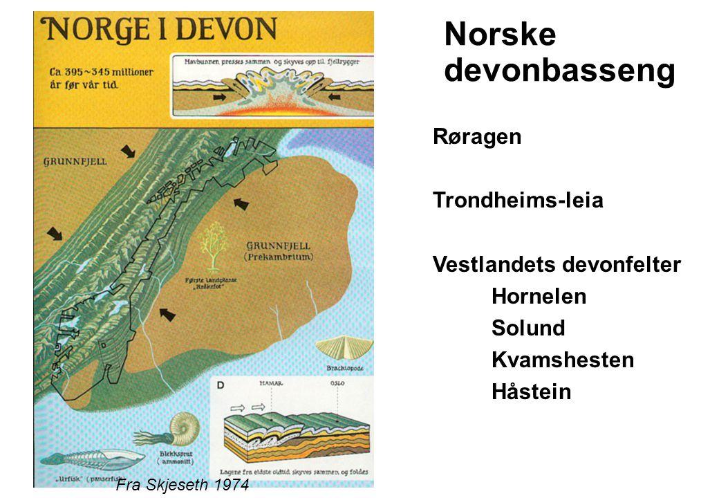 Norske devonbasseng Røragen Trondheims-leia Vestlandets devonfelter