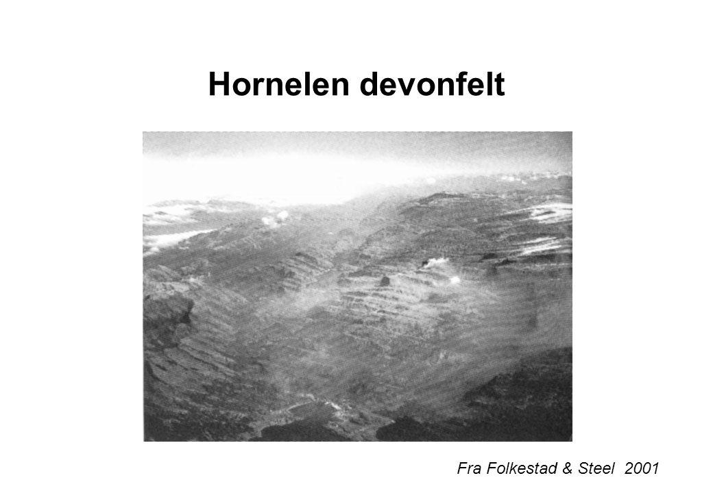 Hornelen devonfelt Fra Folkestad & Steel 2001