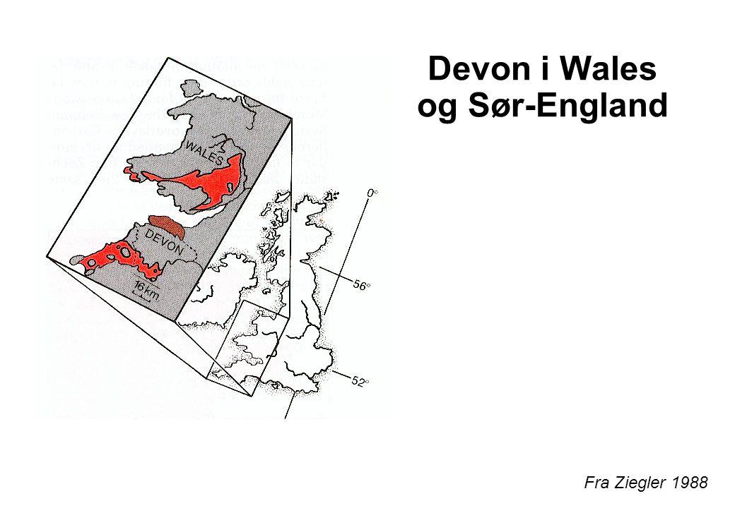 Devon i Wales og Sør-England
