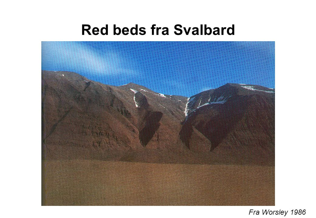 Red beds fra Svalbard Fra Worsley 1986