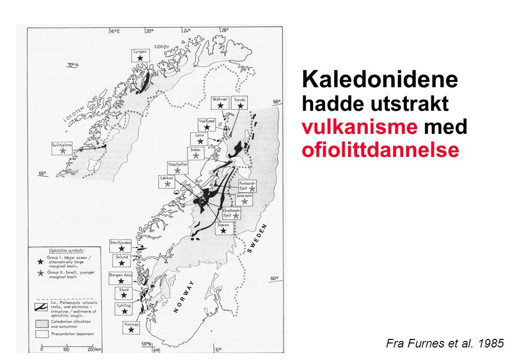 Kaledonidene hadde utstrakt vulkanisme med ofiolittdannelse