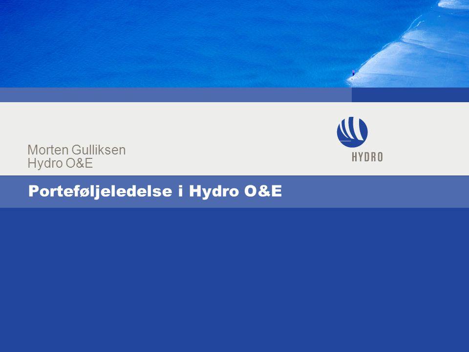 Porteføljeledelse i Hydro O&E